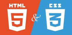 Thiết kế web là gì và thiết kế web chuẩn SEO là gì